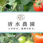 とまと屋@北海道のジェラートは通販でも買える?清水農園の場所や味の種類も【人生の楽園】