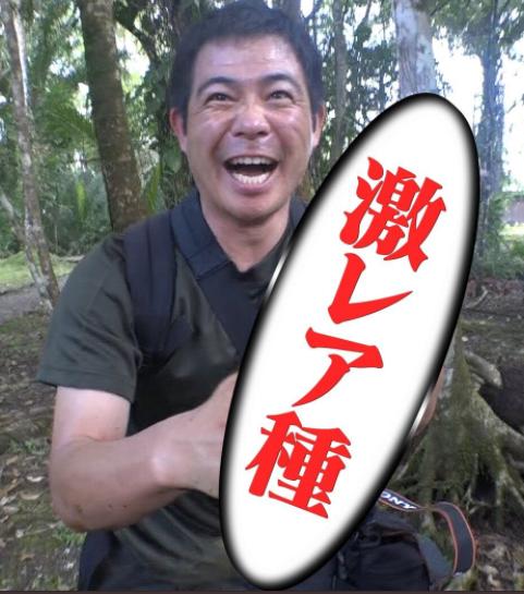 静岡大学 加藤英明